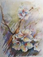 ACUARELA 40 x 31 cm, FLORES DE ALMENDRO V