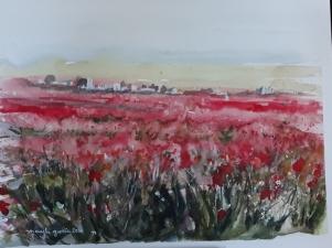 """ACUARELA """"Campo de amapolas II"""".31,5 x 24 cm."""